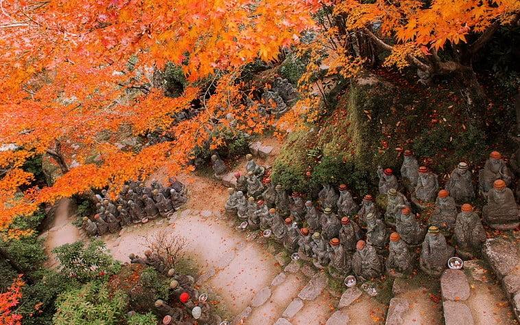 宮島・大本山 大聖院の境内の紅葉 (2)