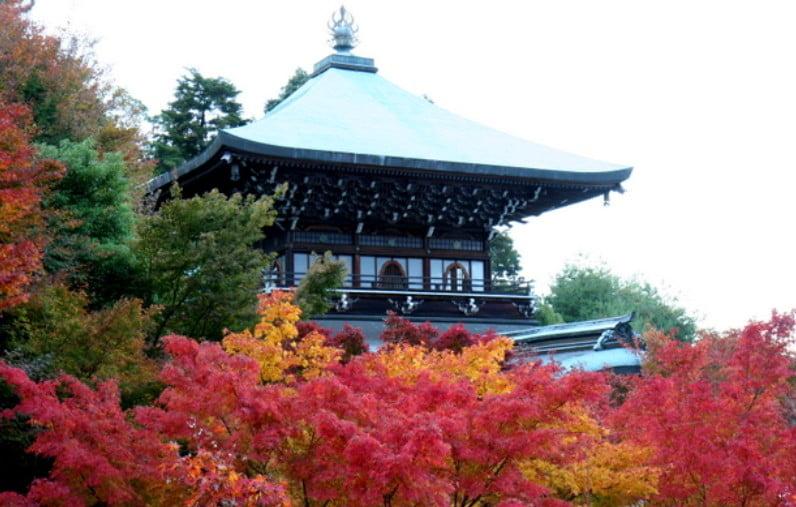 宮島・大本山 大聖院の境内の紅葉